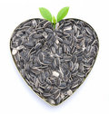 Heart shaped sunflower seeds Royalty Free Stock Photography