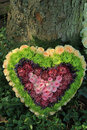 Heart shaped sympathy flower arrangement in green pink and yellow Stock Image