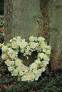 Heart shaped sympathy flowers near a tree Stock Photography