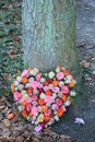 Heart shaped sympathy wreath near a tree Royalty Free Stock Photo