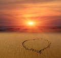 Heart sign on sand at sunset background Stock Photos