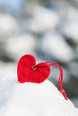 Heart at snow on tree Stock Photography