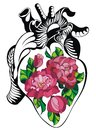 Heart tattoo with roses Royalty Free Stock Photo