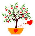 Heart tree in pot and watering can isolated on white background Royalty Free Stock Photos