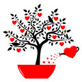 Heart tree in pot and watering can isolated on white background Stock Photography