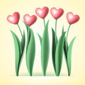 Heart tulips Royalty Free Stock Photo