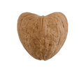 Heart walnut brown celebrations christmas close up Stock Photography