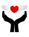 Heart with wings on hands Royalty Free Stock Photo