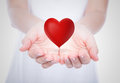 Heart on woman hands over body Royalty Free Stock Photos