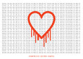 Heartbleed openssl bug vector shape, bleeding heart with wall of