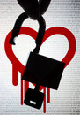 Heartbleed un insecte critique d openssl Photographie stock