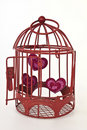 Hearts in a cage Royalty Free Stock Image