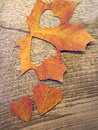Hearts cut from maple leaf Royalty Free Stock Photo