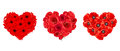 Hearts of red roses, gerbera and poppy flowers. Vector illustration.