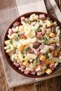Hearty Hawaiian salad with pasta, ham, pineapple, onion, cheddar Royalty Free Stock Photo