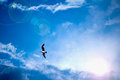 Heavenly bright blue sky with sun rays and bird Royalty Free Stock Image