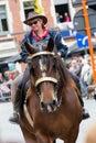 Heavy Horses Parade Lennik Royalty Free Stock Photo