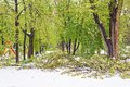 Heavy snow in Moldova, view of central park