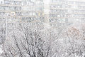 Heavy snowfall or snowstorm Royalty Free Stock Photo