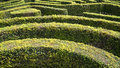 Hedge maze a complex ornamental garden Royalty Free Stock Images