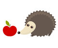 Hedgehog and apple with autum walk vector illustration Royalty Free Stock Photo