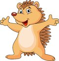 Hedgehog cartoon Royalty Free Stock Image