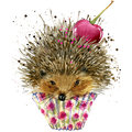 Hedgehog and dessert with cherry T-shirt graphics, Hedgehog and dessert illustration with splash watercolor textured background. i Royalty Free Stock Photo