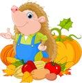 Hedgehog with harvest
