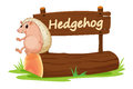 Hedgehog and name plate illustration of on a white Stock Photography