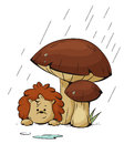 Hedgehog in the rain vector hiding from under a mushroom Stock Images