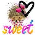 Hedgehog T-shirt lettering graphics. Hedgehog illustration watercolor. Text sweet