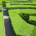 Hedges labyrinth Royalty Free Stock Photography