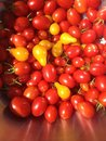 Heirloom bounty an blindingly vibrant of cherry tomatoes Stock Photo