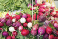 Heirloom radish bunches at farmers market and easter egg colorful fruits and vegetables stall Stock Photos