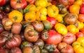 Heirloom tomato's Royalty Free Stock Photo