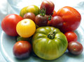 Heirloom tomatoes from garden fresh assortment of Stock Photography