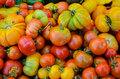 Heirloom tomatoes multi hued displayed at a farmers market Stock Image