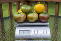Heirloom Tomatoes On Produce Scale Royalty Free Stock Photo