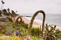 Heisler Park Stock Photography