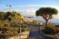 Heisler Park's landscaped walkways above Divers Cove Beach area, Laguna Beach, California. Royalty Free Stock Photo