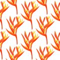Heliconia flower vector background. Tropical orange plantseamless pattern.