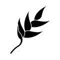 Heliconia tropical natural pictogram