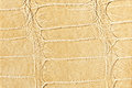 Hell beige leather texture Royalty Free Stock Image