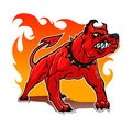 Hell hound this is a stylized dog can be used as a mascot Stock Photos