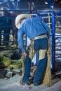 Helldorado days Rodeo Royalty Free Stock Photo