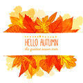 Hello autumn banner with orange and red hand drawn
