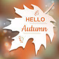 Hello Autumn orange card design Royalty Free Stock Photo