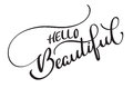 Hello beautiful text on white background. Calligraphy lettering illustration EPS10