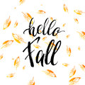 Hello fall text on orange leaves background