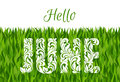 Hello JUNE. Decorative Font made in swirls and floral elements.